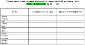 Форма графика проведения проверок состояния условий и охраны труда